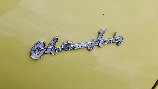 1957 Austin-Healey 100/6 For Sale (picture 64 of 97)