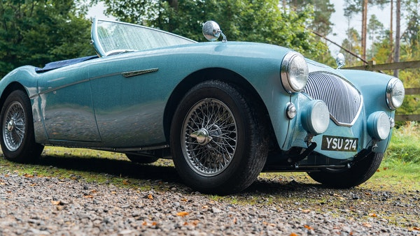 1954 Austin Healey 100 M Spec LHD For Sale (picture 8 of 116)