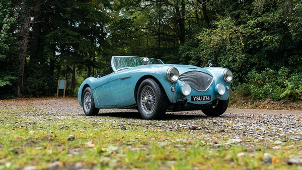 1954 Austin Healey 100 M Spec LHD For Sale (picture 6 of 116)