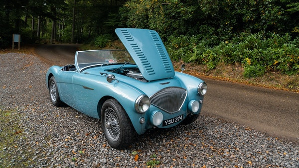 1954 Austin Healey 100 M Spec LHD For Sale (picture 38 of 116)