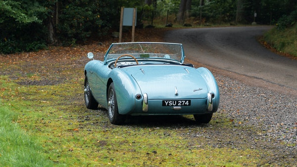 1954 Austin Healey 100 M Spec LHD For Sale (picture 16 of 116)