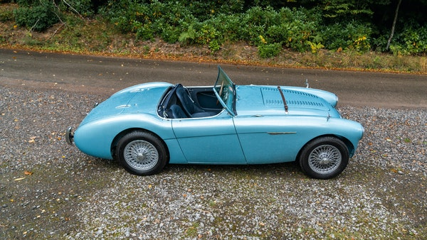 1954 Austin Healey 100 M Spec LHD For Sale (picture 9 of 116)