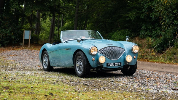 1954 Austin Healey 100 M Spec LHD For Sale (picture 29 of 116)