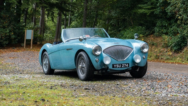 1954 Austin Healey 100 M Spec LHD For Sale (picture 1 of 116)