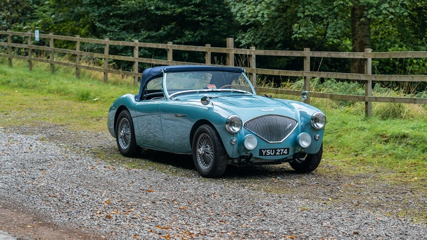 1954 Austin Healey 100 M Spec LHD For Sale (picture 35 of 116)