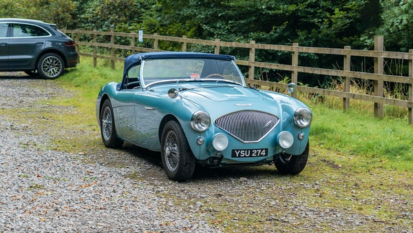 1954 Austin Healey 100 M Spec LHD For Sale (picture 37 of 116)