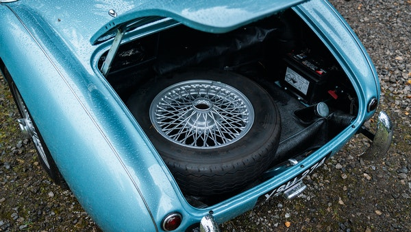1954 Austin Healey 100 M Spec LHD For Sale (picture 97 of 116)