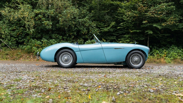 1954 Austin Healey 100 M Spec LHD For Sale (picture 7 of 116)