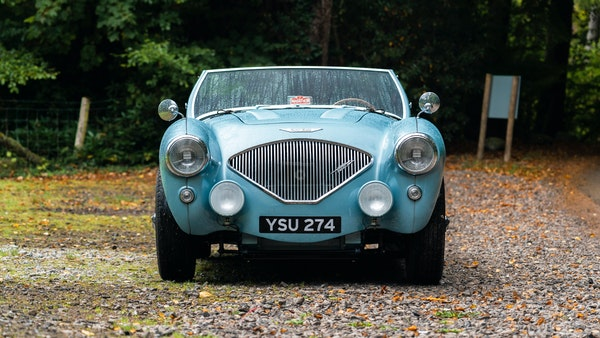 1954 Austin Healey 100 M Spec LHD For Sale (picture 18 of 116)