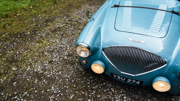 1954 Austin Healey 100 M Spec LHD For Sale (picture 27 of 116)