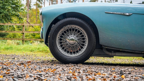 1954 Austin Healey 100 M Spec LHD For Sale (picture 41 of 116)