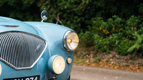 1954 Austin Healey 100 M Spec LHD For Sale (picture 72 of 116)