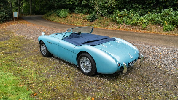 1954 Austin Healey 100 M Spec LHD For Sale (picture 31 of 116)