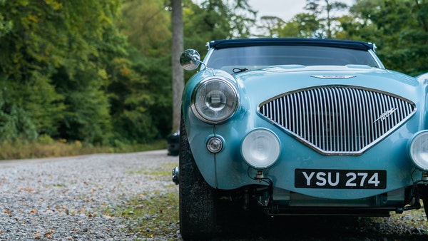 1954 Austin Healey 100 M Spec LHD For Sale (picture 57 of 116)