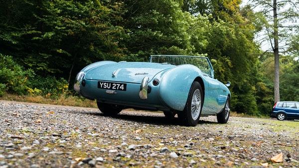1954 Austin Healey 100 M Spec LHD For Sale (picture 13 of 116)