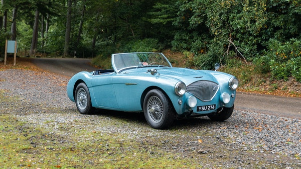 1954 Austin Healey 100 M Spec LHD For Sale (picture 5 of 116)