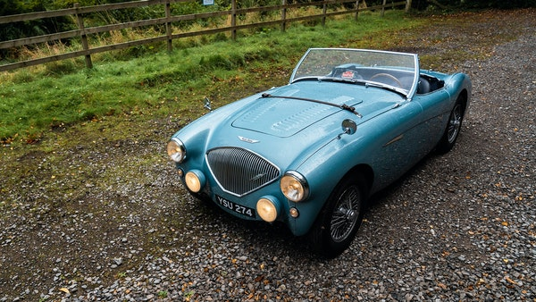 1954 Austin Healey 100 M Spec LHD For Sale (picture 25 of 116)