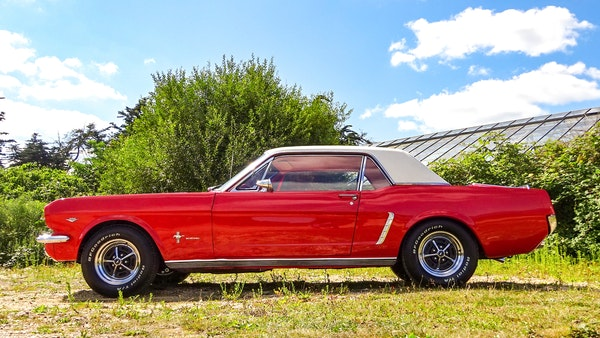 1964 Ford Mustang D Code For Sale (picture 5 of 105)