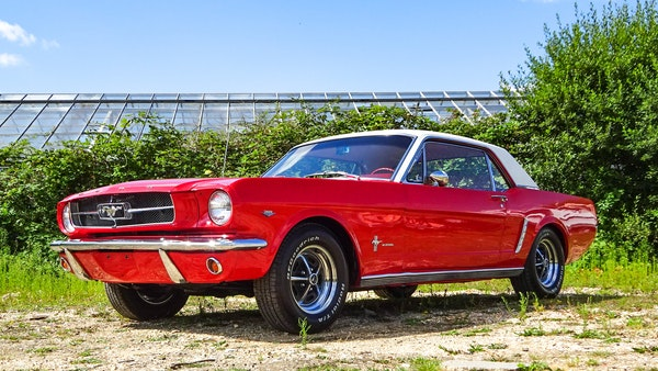 1964 Ford Mustang D Code For Sale (picture 3 of 105)