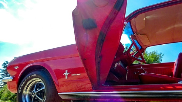 1964 Ford Mustang D Code For Sale (picture 57 of 105)
