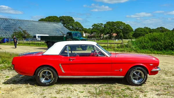 1964 Ford Mustang D Code For Sale (picture 19 of 105)