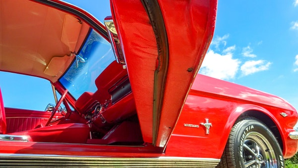 1964 Ford Mustang D Code For Sale (picture 56 of 105)