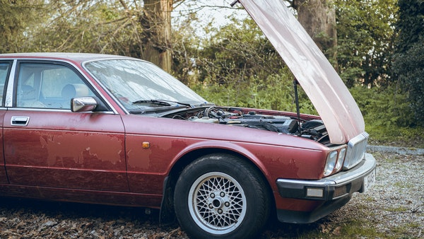 1989 Jaguar XJ40 project cars with Lister modifications For Sale (picture 147 of 153)