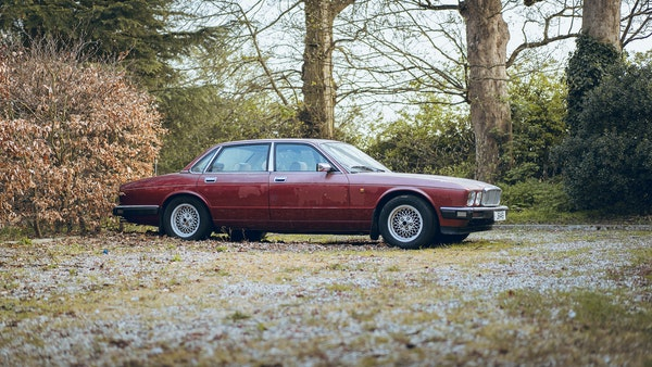 1989 Jaguar XJ40 project cars with Lister modifications For Sale (picture 82 of 153)