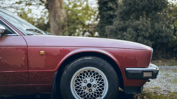 1989 Jaguar XJ40 project cars with Lister modifications For Sale (picture 121 of 153)