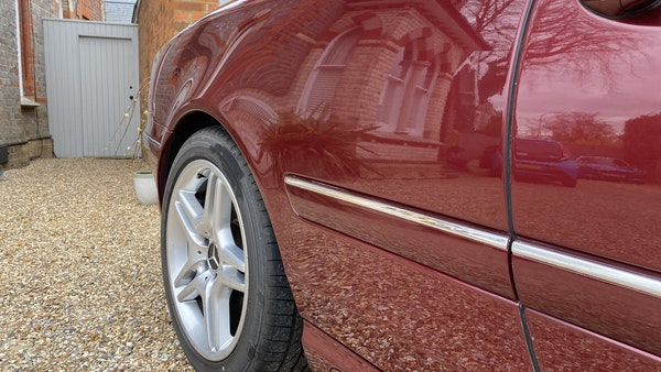 RESERVE LOWERED! - 2003 Mercedes CL600 For Sale (picture 89 of 255)