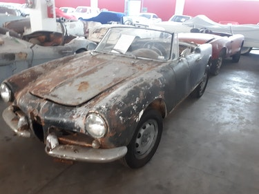 Picture of 1961 Alfa romeo giulietta spider For Sale
