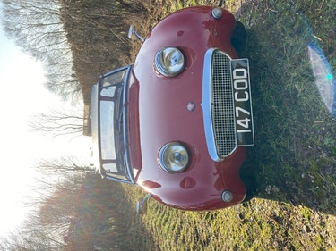 Picture of 1959 Austin Healey MK1 (Frogeye) Sprite For Sale