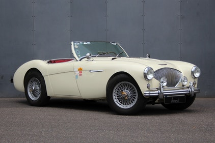 Picture of 1955 Austin-Healey 100 / 4 BN1 LHD - Restored! For Sale