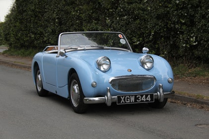 Picture of 1959 Austin Healey Frogeye Sprite - Delightful Example For Sale