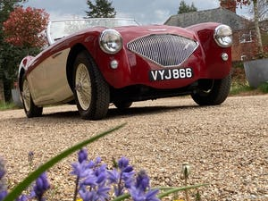 1953 Austin Healey 100 M For Sale (picture 21 of 34)