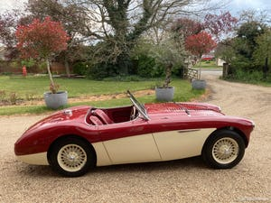 1953 Austin Healey 100 M For Sale (picture 23 of 34)