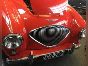 Austin Healey 100/4 1955 RHD  late BN1 For Sale (picture 9 of 10)