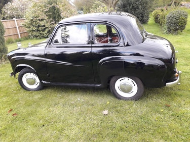 Picture of 1954 Austin A30 excellent condition For Sale