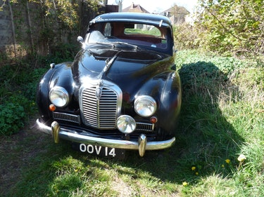 Picture of 1954 Austin Somerset For Sale