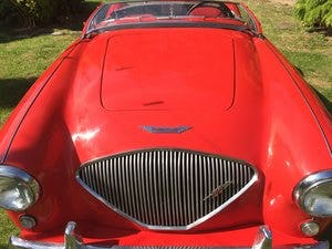 1955 AUSTIN HEALEY 100/4 BN1 ORIGINAL CAR For Sale (picture 6 of 6)