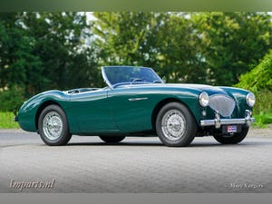 1955 Excellent Austin Healey 100 (BN1) LHD For Sale (picture 1 of 6)