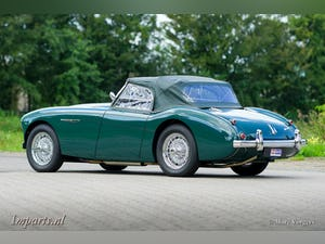 1955 Excellent Austin Healey 100 (BN1) LHD For Sale (picture 6 of 6)