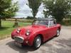 Picture of 1959 Austin Healey 'Frogeye' Sprite  for Sale in Hampshire.. SOLD