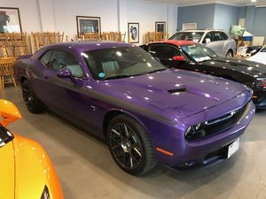 Picture of 2016 Challenger R/T HEMI V8 in Plumb Crazy Purple For Sale