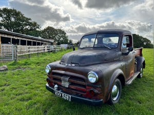 1952 Dodge B3B short bed pickup truck For Sale (picture 1 of 8)
