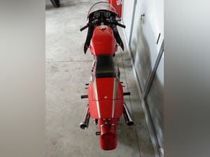 1983 Ducati 900 Mike Hilwood Replica For Sale (picture 3 of 6)