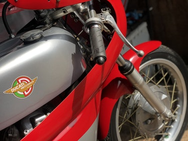 Picture of 0000 Ducati 350 Race For Sale