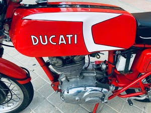 1974 Ducati 250cc 24 hours For Sale (picture 2 of 6)