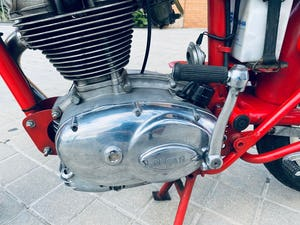 1974 Ducati 250cc 24 hours For Sale (picture 6 of 6)