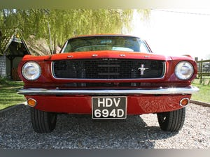 1966 66 Ford Mustang GT Fastback Wanted (picture 10 of 30)